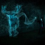 1st – Conjuring Up A Stag Patronus by Kathryn Graham
