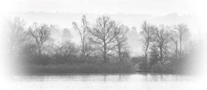 Across Frensham Little Pond by Kathryn Graham