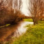 Riverbank by Chris Bean