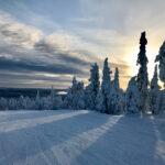 Roka Finland by John Sturgeon