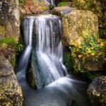 Wisley Waterfall by Martyn Sharp