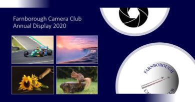 Annual Display 2020 – Available to View
